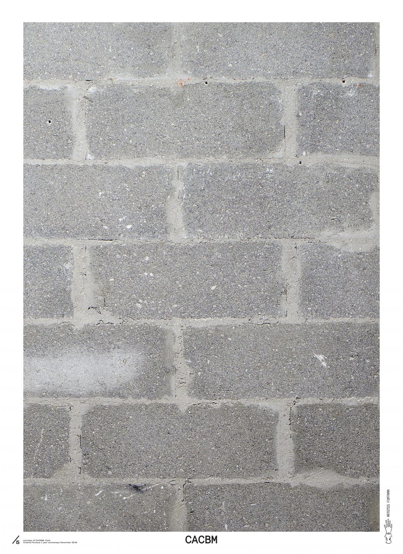 Hors les murs at Artemis Fontana — CACBM Paris Clément Delepine